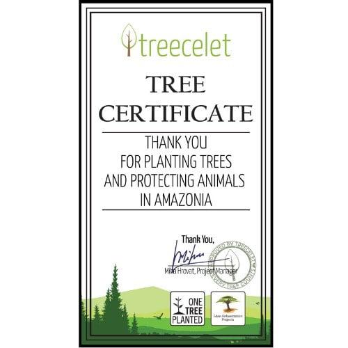 The Amazon Rainforest Certificate