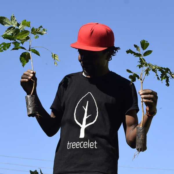 Just plant Trees
